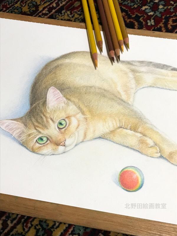 猫のマーチ君 講師 色鉛筆画