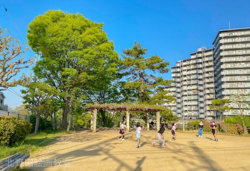 ご近所の公園(2021年春に撮影)北野田絵画教室