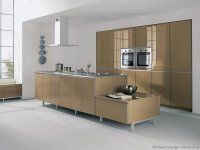 Pictures of Kitchens - Modern - Beige Kitchen Cabinets ...