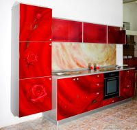 Pictures of Kitchens - Modern - Red Kitchen Cabinets ...