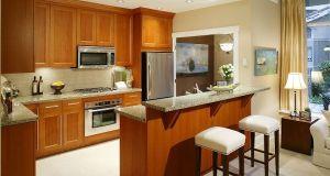 kitchens  (1)