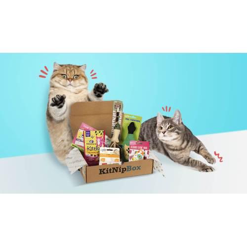 Medium Crop Of Barkbox For Cats