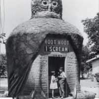 I Scream, You Scream For Hoot Hoot Ice Cream