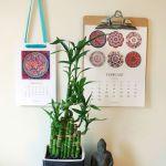 2016 100 Mandalas Calendar