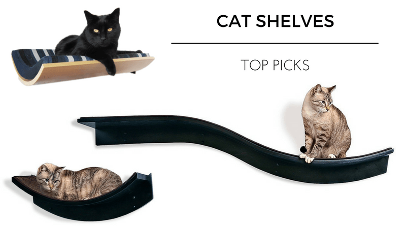 Top Cat Shelves Of 2017 Kitty Loaf