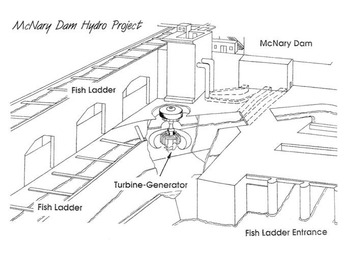 fish ladder dam diagram