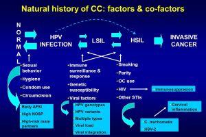 peneyebak kanker serviks,vaksin hpv,vaksin kanker serviks,hpv,faktor