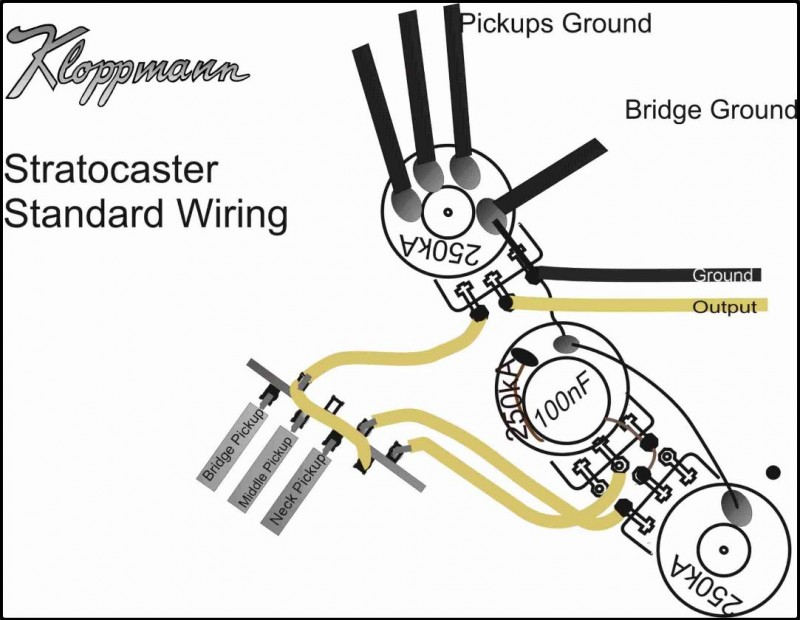 Fender Pickup Ground Plate Wiring Diagrams Online Wiring Diagram