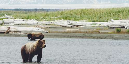 Luxury Honeymoon Alaska - Experiential Ecstasy