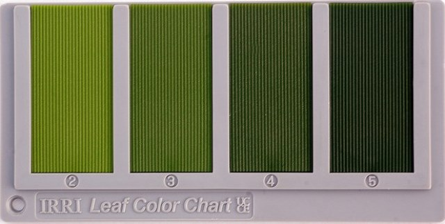 Leaf Color Chart - IRRI Rice Knowledge Bank - sample cmyk color chart
