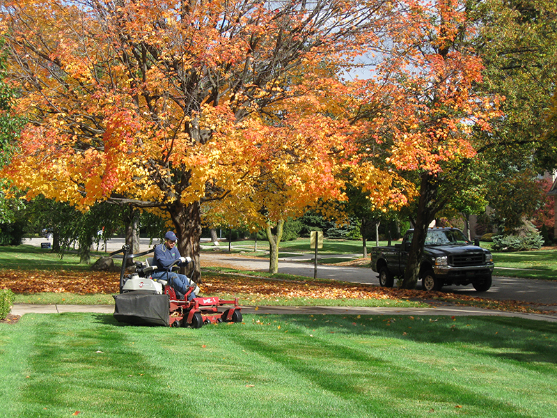 Lawn Maintenance | All Seasons Lawn Care