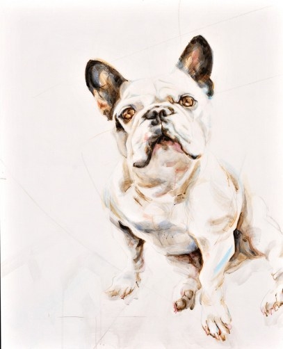 Tristan French Bulldog