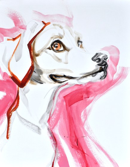 Dog in Pink   Acrylic on paper   70x80 cm   500€