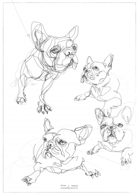 French Bulldogs | print available