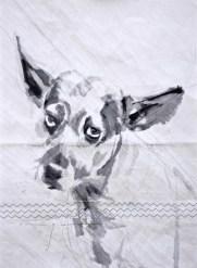 Dog on sail 01 Acrylic on sailcloth   50x70 cm   500€