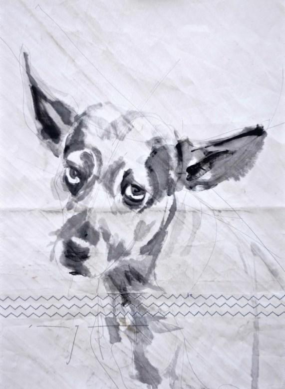 Dog on sail 01|Acrylic on sailcloth | 50x70 cm | 500€