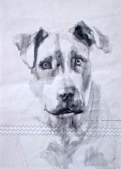 Dog on sail 02 Acrylic on sailcloth   50x70 cm   500€