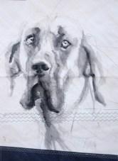 Dog on sail 03  Acrylic on sailcloth   50x70 cm   500€