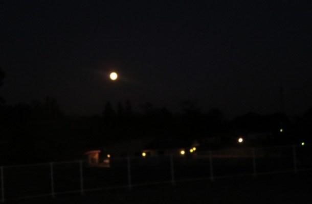 今夜は満月