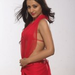 trisha-hot-stills (4)