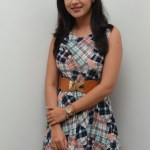 Yaman Movie Audio Launch (154)