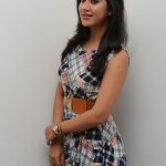 Yaman Movie Audio Launch (156)