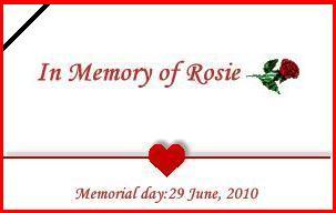 Logo for Rosie