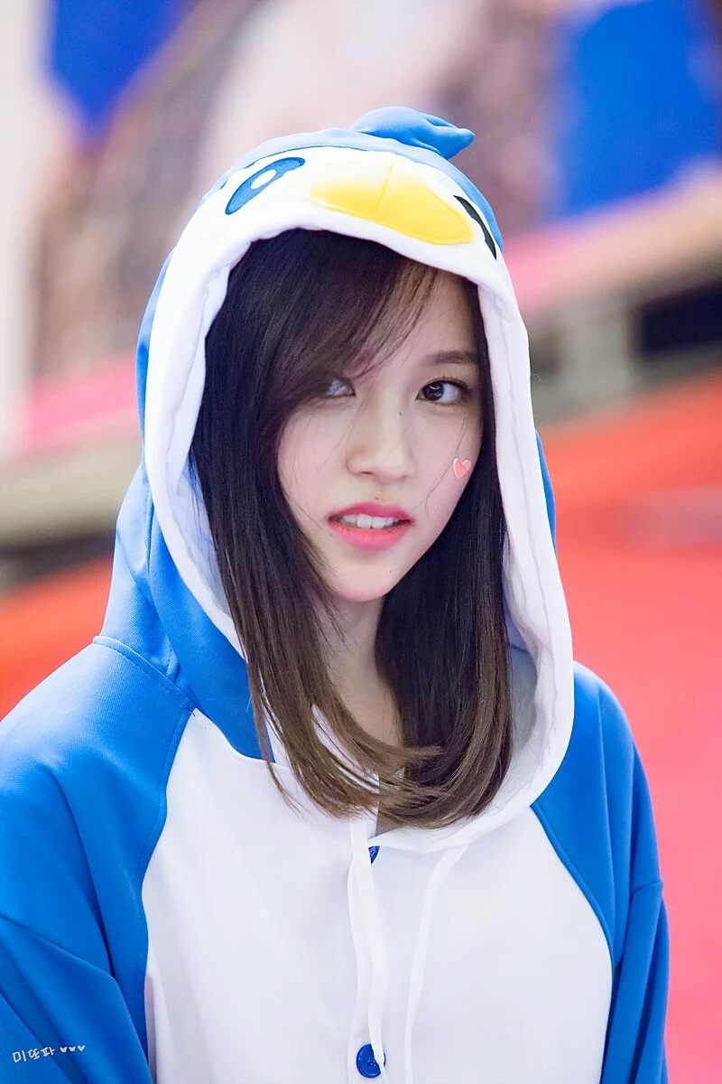Animal Face Wallpaper This Fan S Birthday Present For Twice S Mina Might Be The