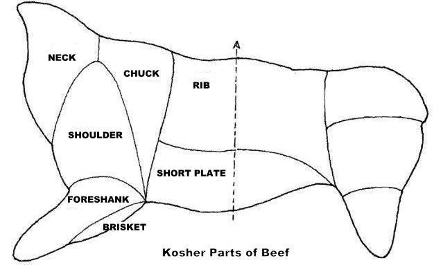 chicken cuts diagram beef cuts diagram