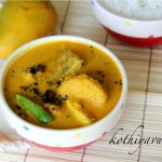 Fish Mango Curry-Meen Manga Curry kothiyavunu.com
