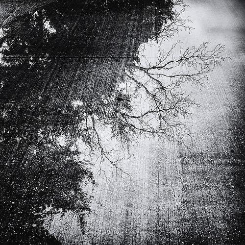 black and white rain photo