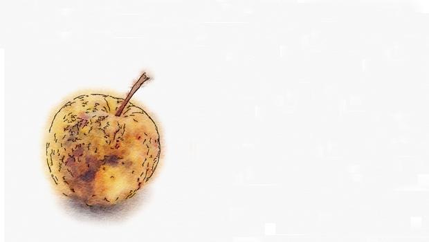 fruitpourri3