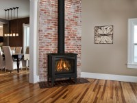 Birchwood 20 Free Standing Gas Fireplaces | Direct Vent ...