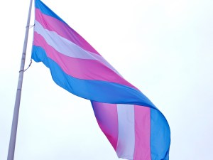 """Transgender Flag: San Francisco (2012)"" by torbakhopper is licensed under CC BY 2.0 (https://www.flickr.com/photos/gazeronly/8206733386)"