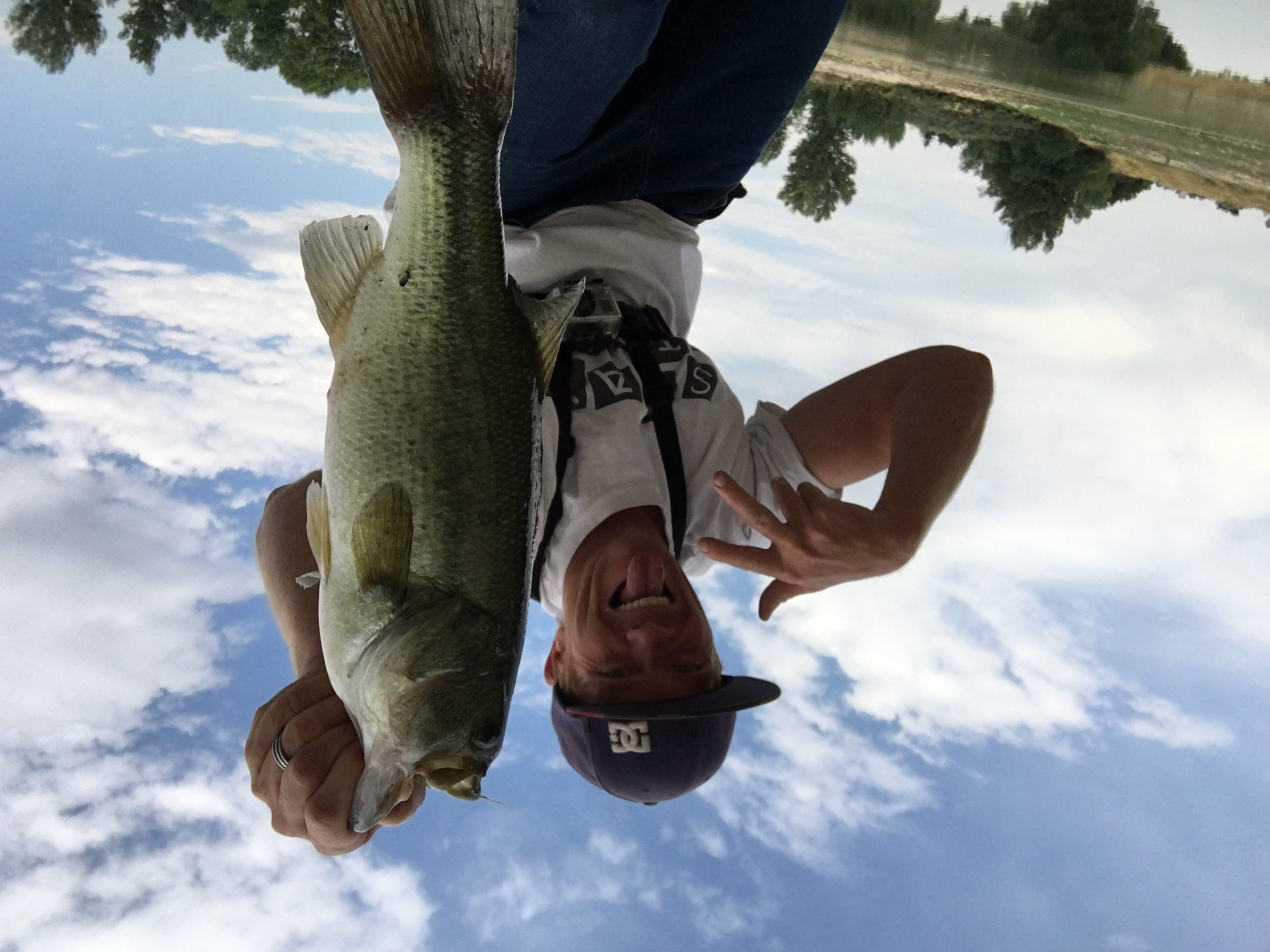 Bass fishing topwater lures where when what how to for Best bass fishing near me