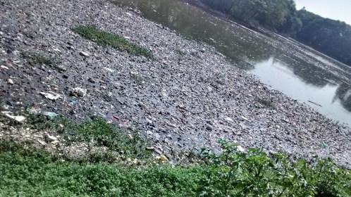 Halasuru lake filled with garbage