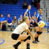 Lady Cats' Volleyball Team Will Play Thursday