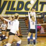 Lady Cats Volleyball Wins Two Games In Tourney