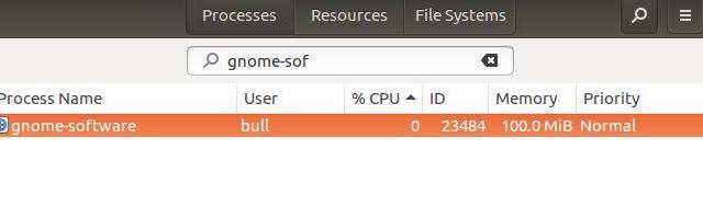 gnome software backgound process