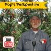 Pop's Perspective