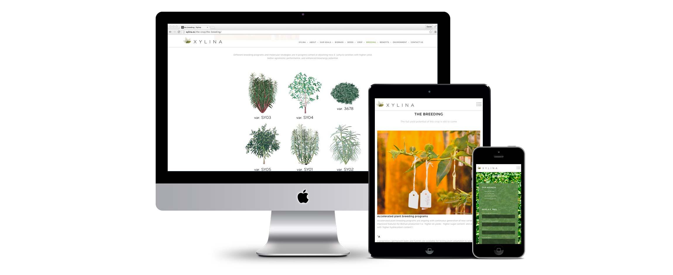KUINI Estudio de diseño gráfico Alicante se encarga deXylina Diseño Web y cuenta con nuestro apoyo para desarrollar su Web e identidad corporativa.