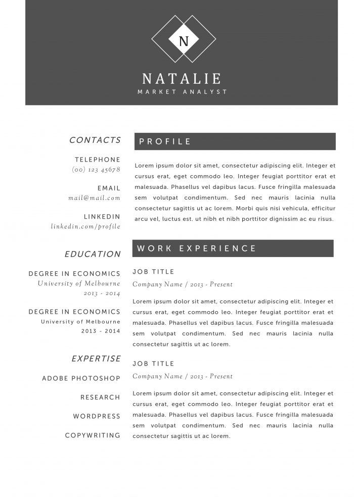 professional cv with photo