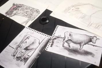 kunststichting-markelo-ksm-herfstworkshop-2015-koeien-schilderenIMG_0103