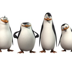 "Film ""Pingwiny z Madagaskaru"""