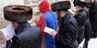 spiderman-purim