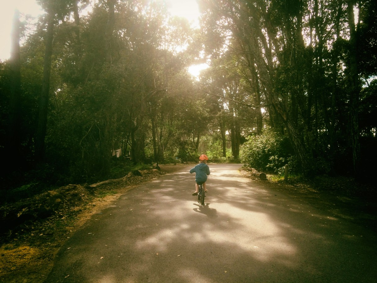A young child biking down a remote path outside in the redwood forest
