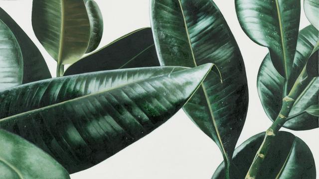 Black Aesthetic Wallpaper Hallo Nieuw Bestuur Kweek Communicatie