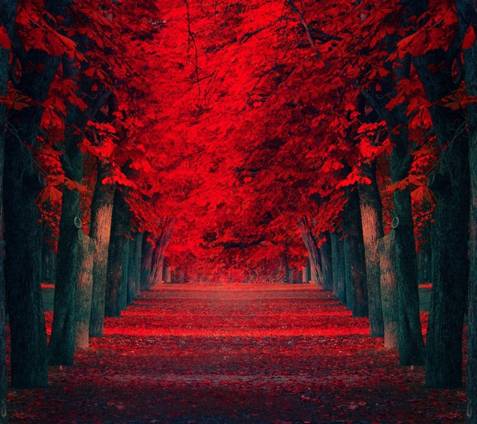 red_nature