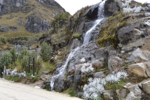 Waterfall, Cajas National Park