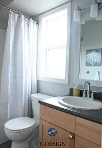 Sherwin Williams Bathroom Cabinet Paint Colors - Home ...